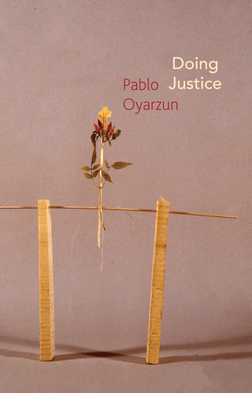 Book cover of Doing Justice